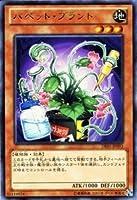 遊戯王カード 【パペット・プラント】 DE01-JP093-R ≪デュエリストエディション1≫