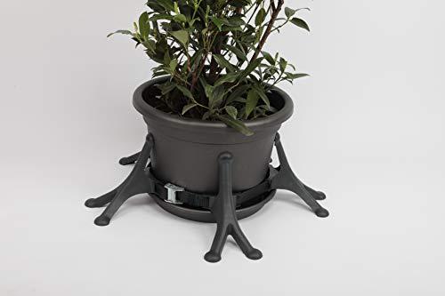 Topfstütze Größe L, flexibler Umfallschutz für Topfpflanzen bis 1,80 Meter Höhe