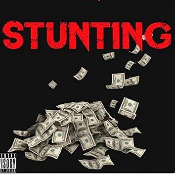 Stunting (Rich Boy & Geek)