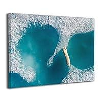 Skydoor J パネル ポスターフレーム シロクマ 飢餓 インテリア アートフレーム 額 モダン 壁掛けポスタ アート 壁アート 壁掛け絵画 装飾画 かべ飾り 30×20