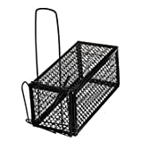 Bloomerang Rodent Animal Mouse Humane Live Trap Hamster Cage Mice Rat Control Catch