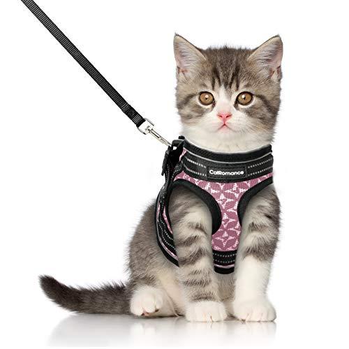 CatRomance Katzengeschirr mit Leine Set Geschirr für Katzen Ausbruchsicher Katzenweste weich verstellbarmit reflektierenden Streifen für kleine Kitten Katze Cat Harness S Pink