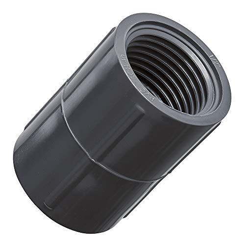 5 Pack - Orbit 1/2 Inch Female Thread PVC Coupling for Sprinkler Pipe