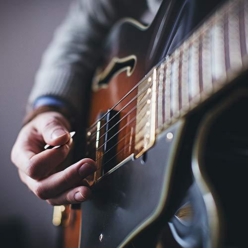 BestSounds『ギターピックおにぎり12枚セット』