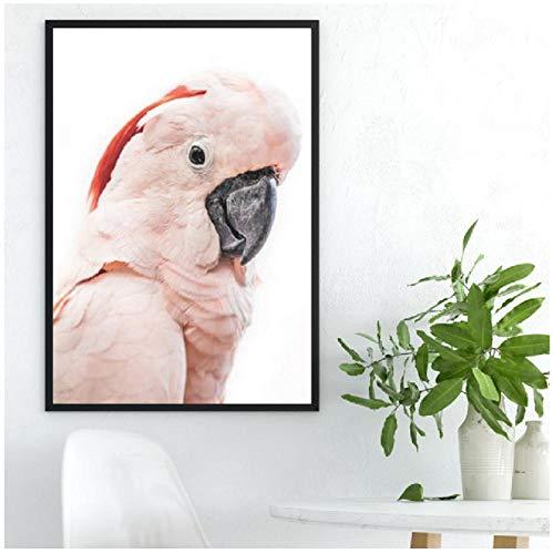hdbklhjxk roze cacadu Australische vogel print tropische grote dier poster canvas schilderij cacadu fotografie afbeelding huis muur decor 50x70cm niet ingelijst