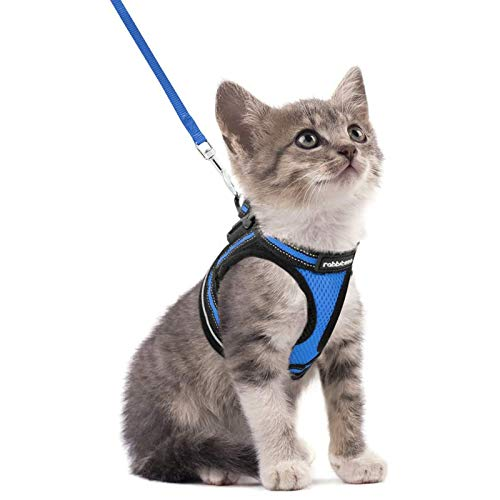 rabbitgoo Cat Harness and Leash Set for Walking Escape Proof, Adjustable Soft Kittens Vest with Reflective Strip for Cats, Step-in Comfortable Outdoor Vest, Blue, S (Chest:9.0'-12.0')