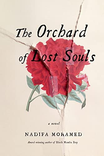Image of The Orchard of Lost Souls: A Novel