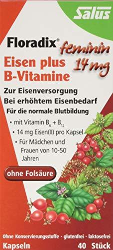 Floradix Eisen plus B-Vitamine Kapseln, 40 St.