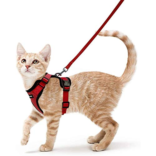 rabbitgoo Cat Harness and Leash for Walking, Escape Proof Soft Adjustable Vest Harnesses for Cats, Easy Control Breathable Reflective Strips Jacket, Red, XS (Chest: Chest: 13.5