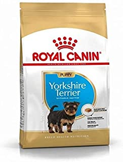 Royal Canin Yorkshire Terrier Junior Dog Food (1.5kg)