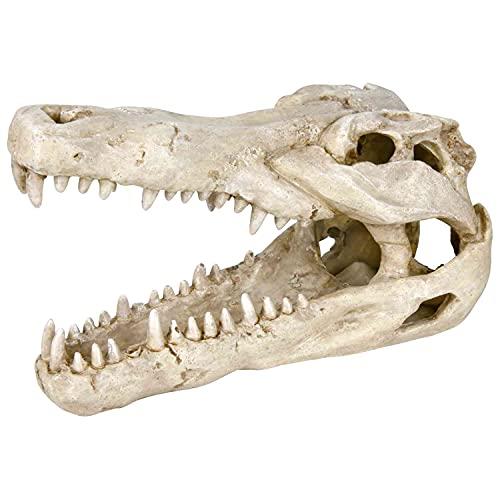 Trixie Crâne de Crocodile pour Aquarium 14 cm