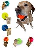 Moby Dog Ball frei von giftigen Weichmachern und giftigen Inhaltsstoffen Hundeball (Leuchtorange)