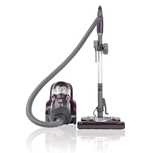 Kenmore 22614 Pet Friendly Lightweight Bagless Compact Canister Vacuum with Pet Powermate, HEPA, Extended Telescoping Wand, Retractable Cord and 2...