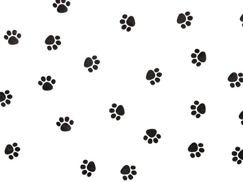 """Pack Of 1, Paw Print Cello Roll 1.0 Mil 24"""" X 100' Made In USA"""