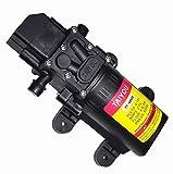 12V DC Diaphragm Fresh Water Spray Pump, 1.2 GPM (4.5 L/Min) 85 PSI, Self Priming Sprayer Pump with Pressure Switch for Caravan RV Marine Boat Lawn Car washing