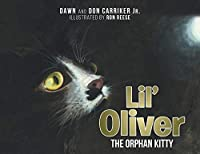 Lil' Oliver the Orphan Kitty