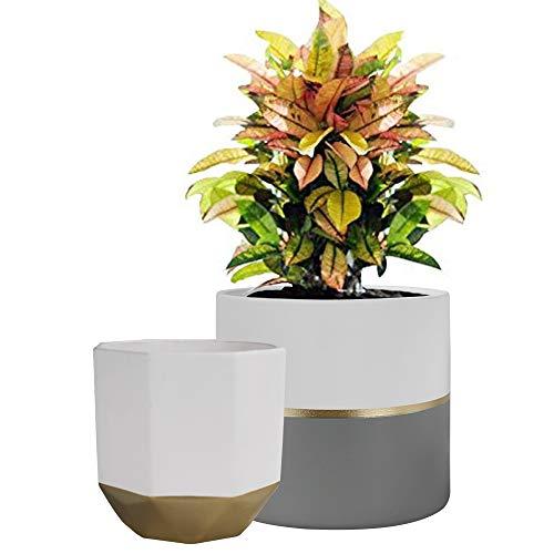 La Jolíe Muse Blumentöpfe, Übertöpfe Keramik 2er Set, Klassisches Design Weiß & Gold, Rund & Achteckig Ø16.5 x H15 cm für Innen