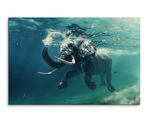 Sinus Art Wandbild 120x80cm Tierfotografie – Schwimmender Elefant unter Wasser