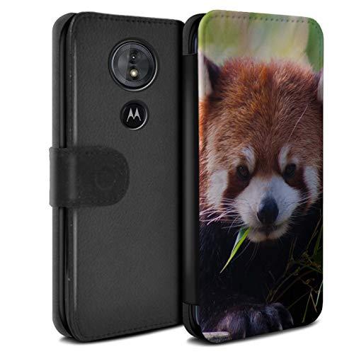 Hülle Für Motorola Moto G6 Play 2018 Wilde Tiere Waschbär Design PU Leder Tasche Brieftasche Schutz Handyhülle Flip Hülle