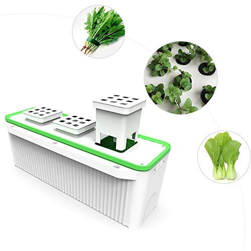 ZDYLM-Y Hydroponische Anzuchtsysteme mit eingebauter Pumpe und intelligenter Wassermangelalarmanzeige, Selbstbewässerungspflanzer