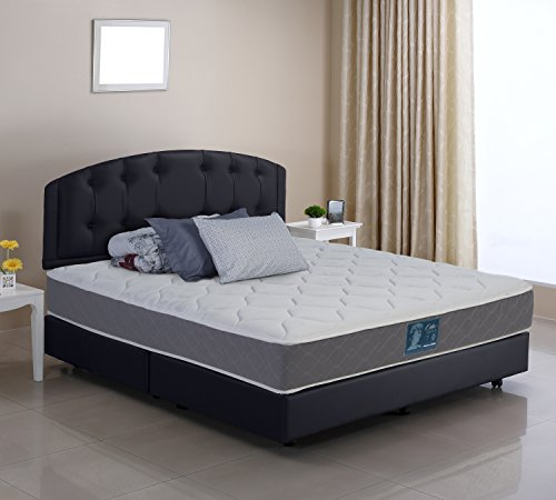 WOLF Sleep Accents 10' Deluxe Firm Mattress with Wrapped Coil...