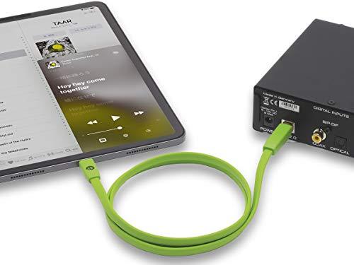 オヤイデ電気『d+USBType-CclassB』