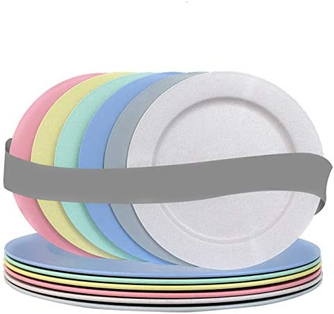 10 Inch Wheat Straw Flat Plastic Plates Set 6 Dinner Plates Dishwasher Microwave Safe Unbreakable product image