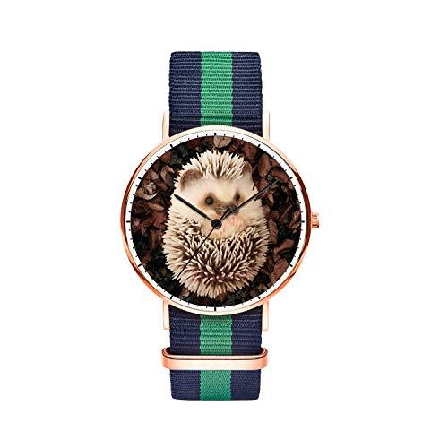 SunbirdsEast Baby Hedgehog Watch Nylon Band for Men 40mm Analog Quartz Wrist Rose Gold Unisex Stainless Steel Children Nylon Multi-Color Striped Band Watch
