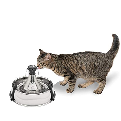 PetSafe Stainless Steel Cat and Dog Water Fountain