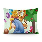 Omigge Cute Cartoons Square Throw Pillow Case, Soft Velvet Cushion Cover With Hidden Zippe For Couch Sofa Home Bed Decoration,Disney Winnie Pooh Eeyore Football