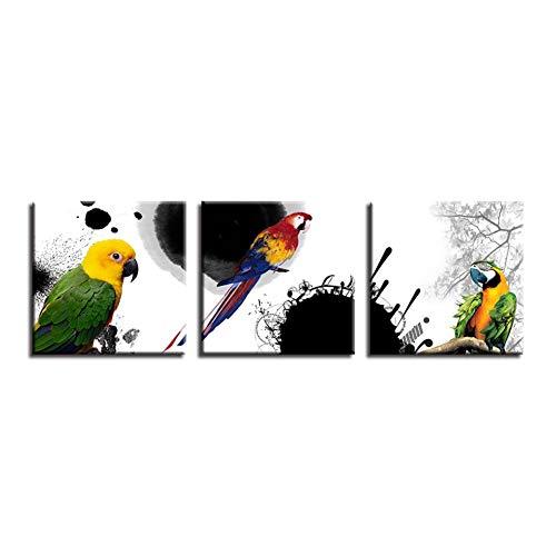 RQMQRL Dipinti su Tela Wall Art Home Decor 3 Pezzi Pappagallo Poster di Animali Domestici Soggiorno HD Stampa Foto di Uccelli Colorati Piuma