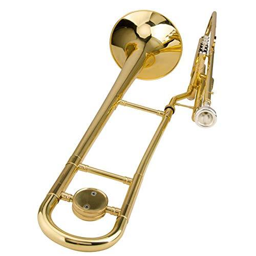 LVSSY Trombón Tenor Limpieza Y Kit de Cuidado Trombón Est
