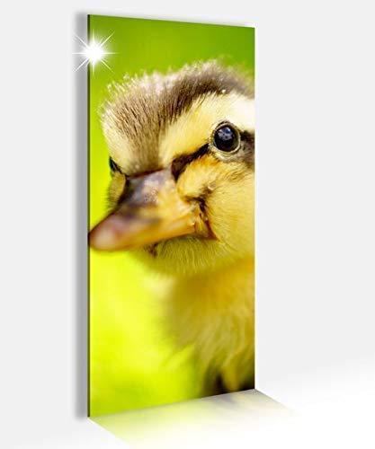 Acryl Afbeeldingen 40x100cm Eend Kuikens Geel Baby Dier Leuke Gans Vogel Acryl Beeld Acryl Glas Beeld Print Acryl Acryl Beeld Afbeeldingen 14A9174