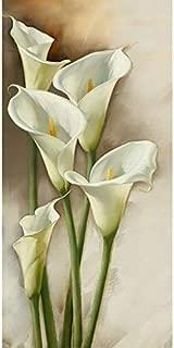 Best calla lily diamond Reviews