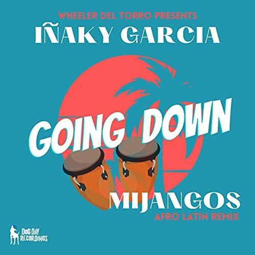 Inaky Garcia