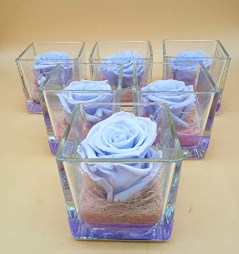 almaflor Ewige Rose Lavendel Violett...