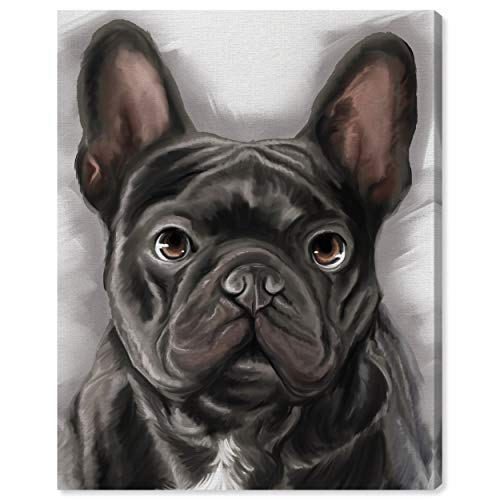 The Oliver Gal Artist Co. Animals Wall Art Canvas Prints 'Gentle Frenchie' Home Décor, 30' x 36', Black, White