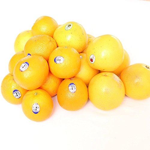 オレンジ 10玉 + グレープフルーツ 白 5玉 + グレープフルーツ 赤 5玉 新鮮