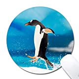 Customized Printed Penguin Mouse Pad Ergonomic Computer Mouse Pad (7.9x7.9x0.1inch) Extended Gaming Mouse Mat with Non-Slip Rubber Base for Desktops Laptop Computer & PC, Home & Office