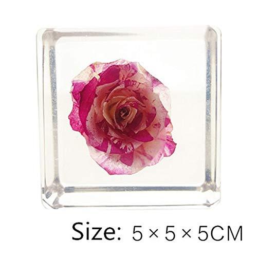Rose, plant, specimen, kubus, verjaardag, geschenk, Valentijn, stuur meisje, vriend Home Decorations huisdecoratie voor woonkamer