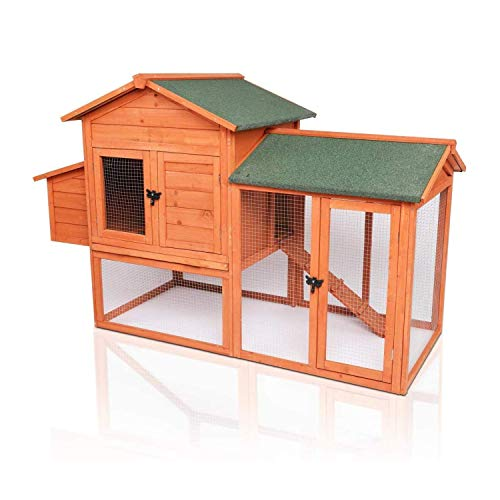 best backyard chicken coop POTBY