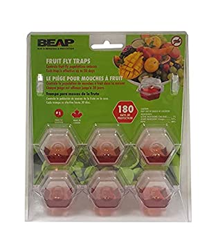 BEAPCO 6-Pack Drop-Ins Fruit Fly Traps: photo