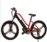 Fangfang Bicicletas Eléctricas, 28 Pulgadas de Bicicletas Bicicletas eléctricas, 36V 250W Pantalla LCD Bicicletas batería de Litio de Doble Freno de Disco de Ciclo al Aire Libre for Adultos,Bicicleta
