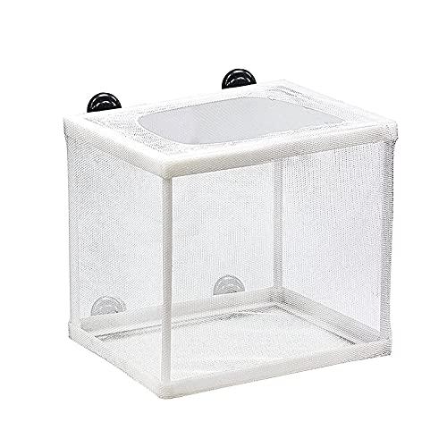 Cdemiy Boîte disolation de Poisson, Filet Délevage Aquarium avec ventouses, Filet pour léclosion des alevins dans Les Aquariums, pour léclosion des Poissons, Isolation, 16 x 15 x 15CM