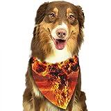 RAHJK Bandana para Perro, Pañuelos para Perro, Reversibles, Ajustables, Triangulares, Bufandas para Mascotas y Gatos Nube Nuclear de Hongos se Caen