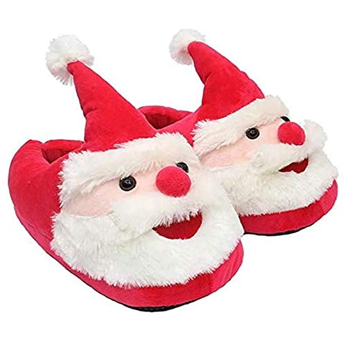 paño zapatos fabricante ERWINJP