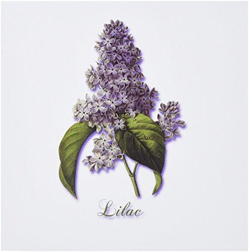 3dRose Set of 12 Greeting Cards, Botanical Print of a Lavender Spring Blooming Fragrant Flower (gc_171228_2)