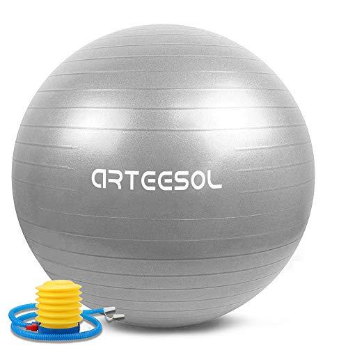 arteesol Bola de Ejercicio 45cm / 55cm / 65cm / 75cm Bola de Yoga Auti Burst Core Gym Swiss Ball con Bomba rápida para Entrenamiento de Pilates Fitness Parto Embarazo (Plata, 55cm)