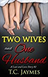 Two Wives and One Husband: A Lust and Love Story #2