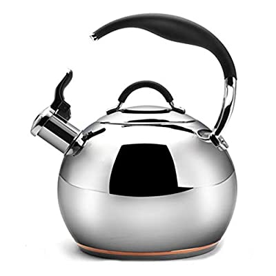 Tea Kettle, Tea Pots for Stove Top Water Kettle Food Grade Stainless Steel and Anti-Hot Handle, With Mirrored look, Compatible on all Stovetops (3.2L)